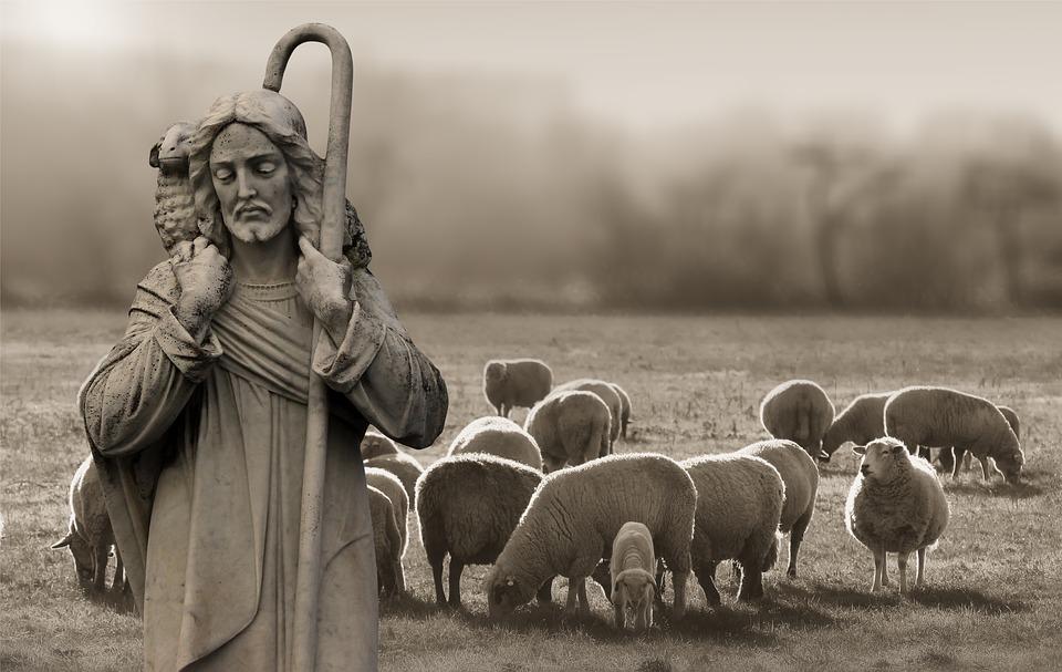 На фото изображен Давид, который пасет овец.
