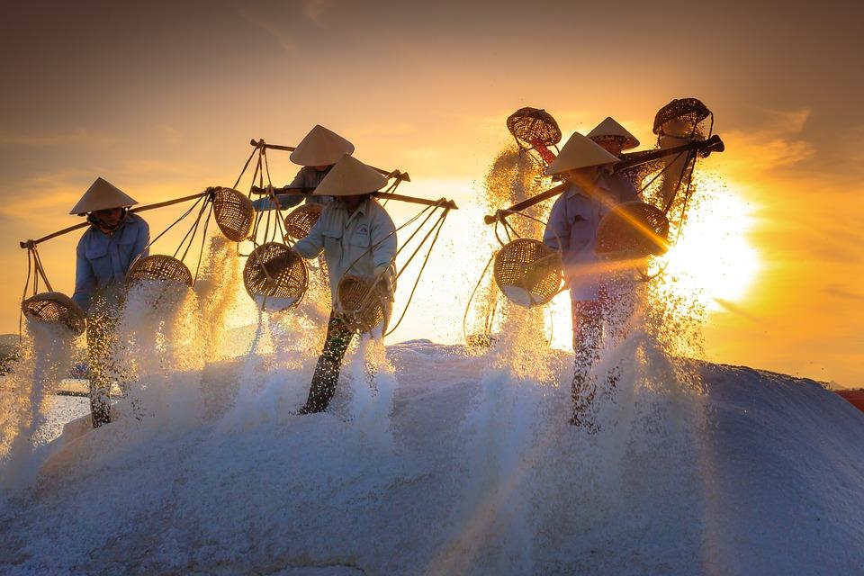 На фото изображены вьетнамцы, просеивающие соль.