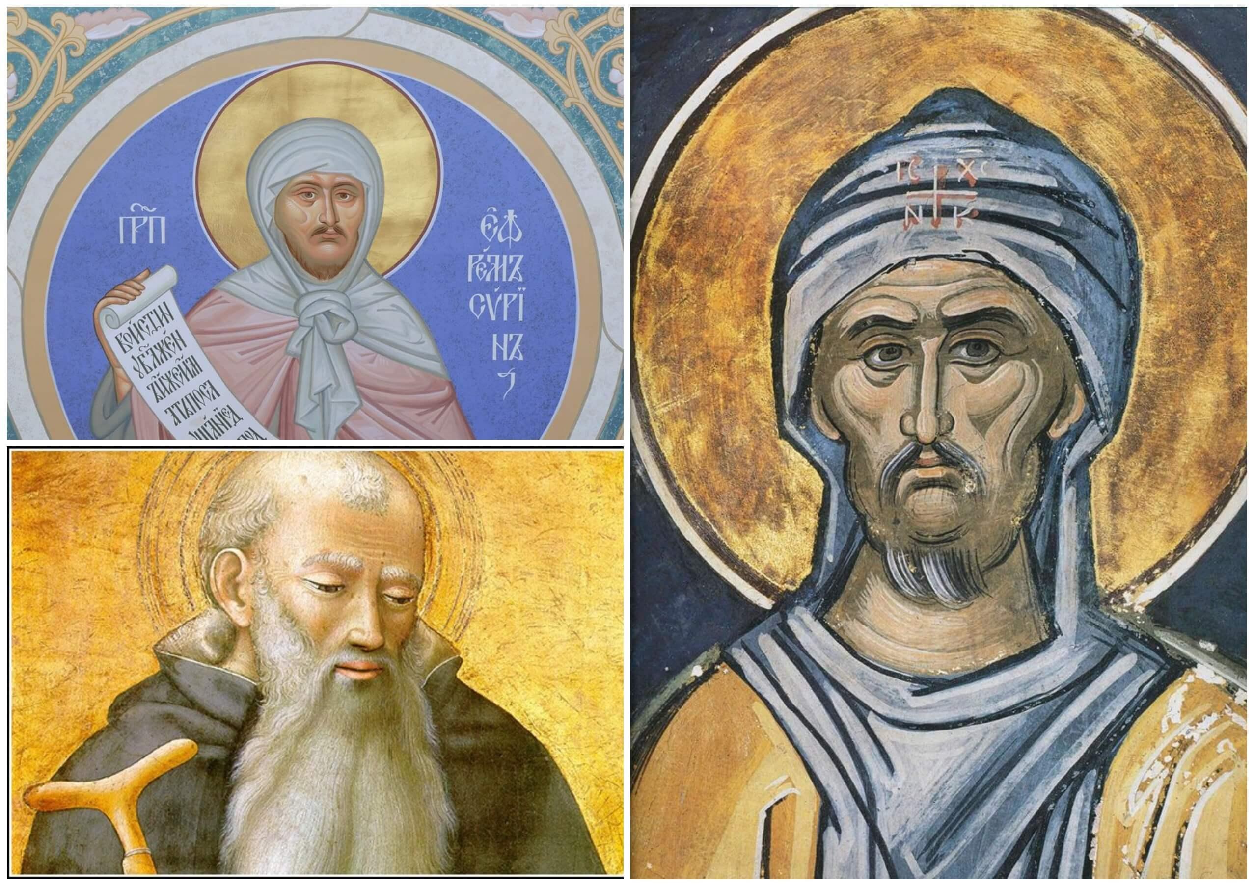 На фото изображены иконы Ефрема Сирина.