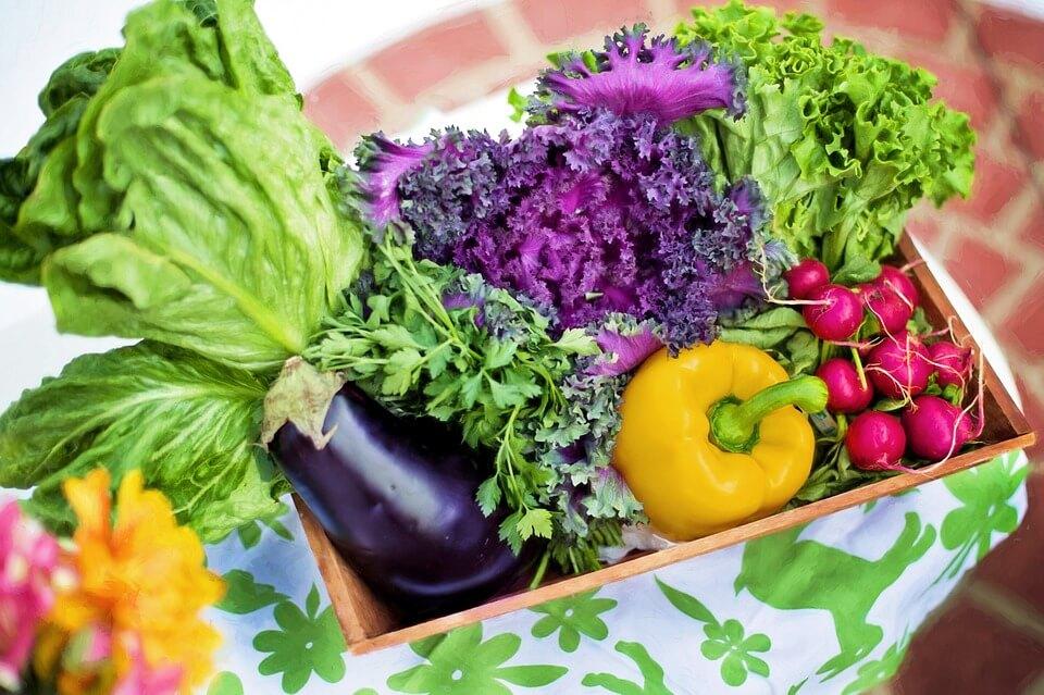 На фото изображены овощи.
