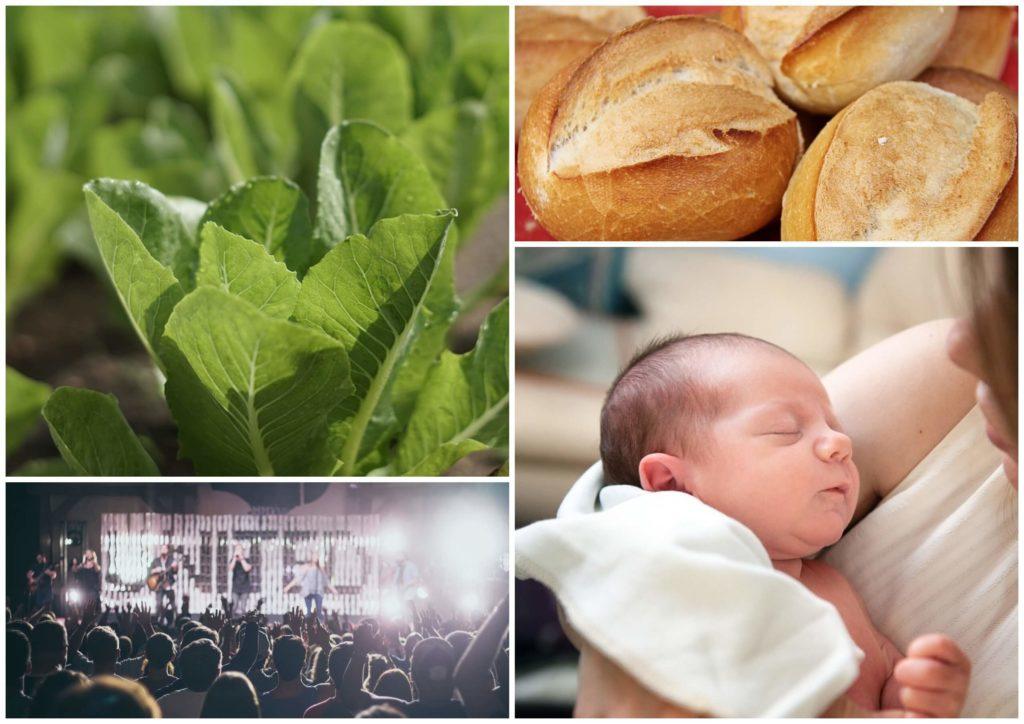 На фото изображены капуста, хлеб, новорожденный на руках у мамы и концерт в клубе.