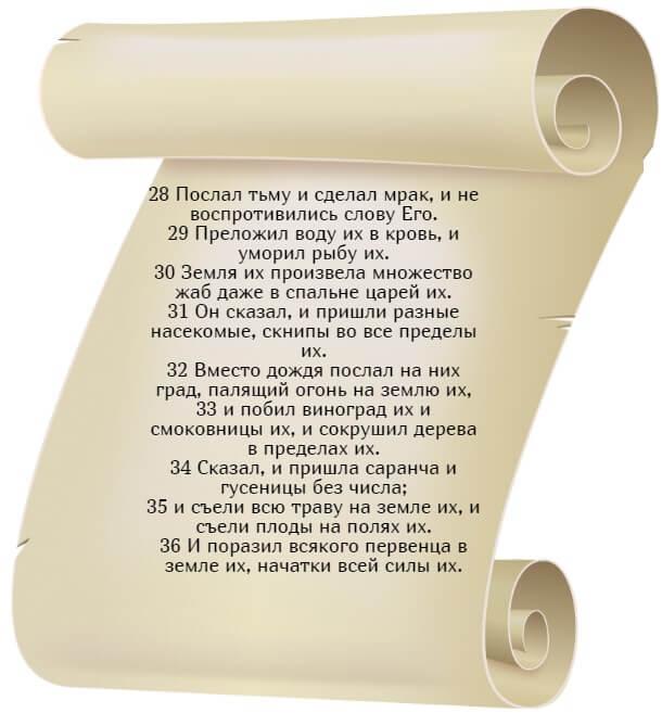 На фото изображен текст псалма 104 на русском языке (часть 4).