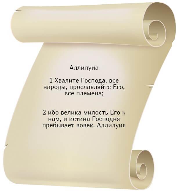 На фото изображен текст псалма 116 на русском языке.