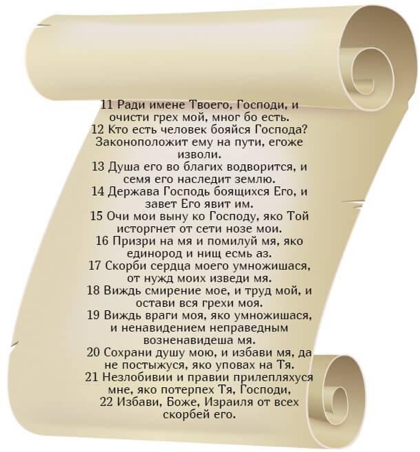 На фото изображен текст псалма 24 (часть 2) на церковнославянском языке.