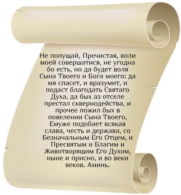 На фото изображен текст молитвы ко Пресвятой Богородице, Петра Студийского (часть 2).